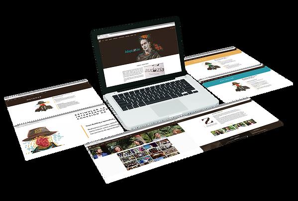 Diseño de Páginas Web para Audazia