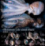 SICL203_L_edited.jpg