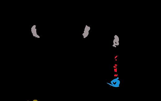 Shisha Express Logo