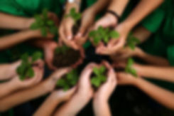 Environmental contribution
