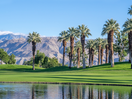 Palm Springs, COVID-19 style