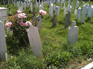 Many victims of enforced disappearances remain in nameless graves. Credit: OHCHR