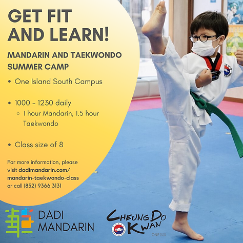 Copy of Mandarin Tae Kwon Do Summer camp