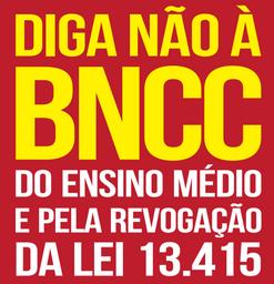 A Base Nacional Comum Curricular (BNCC) e os retrocessos a educação e á sociedade brasileira
