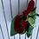 Thumbnail: Margaritaville Parrot Head Baseball Styled Cap