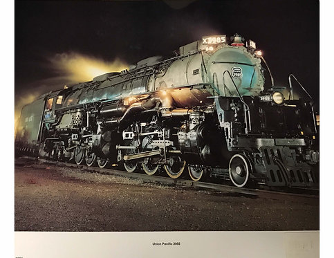 Classics Collection #304: Union Pacific 3985 GR WY