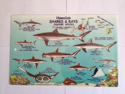 Hawaii Sharks & Rays Card - Inshore & Offshore