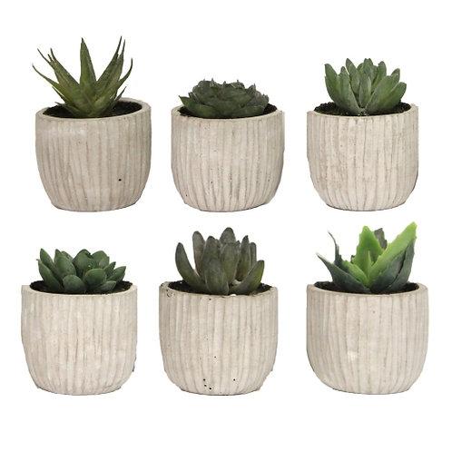 Gisela Graham Replica Mini Succulents - Multiple Types