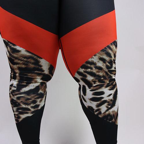 Cheetah Power