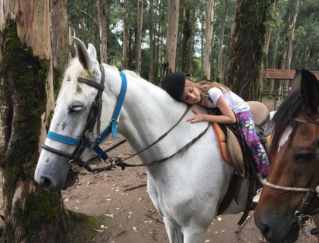 muito amor por esses cavalos.jpg