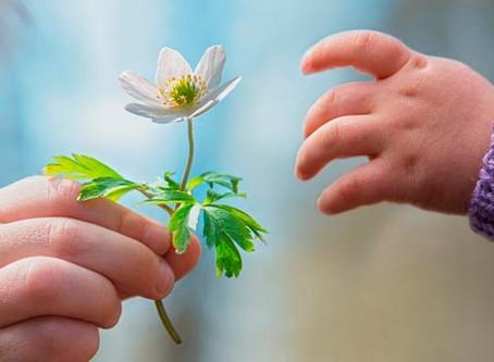 Como Cultivar Emoções Positivas