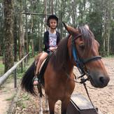 passeio a cavalo.jpg