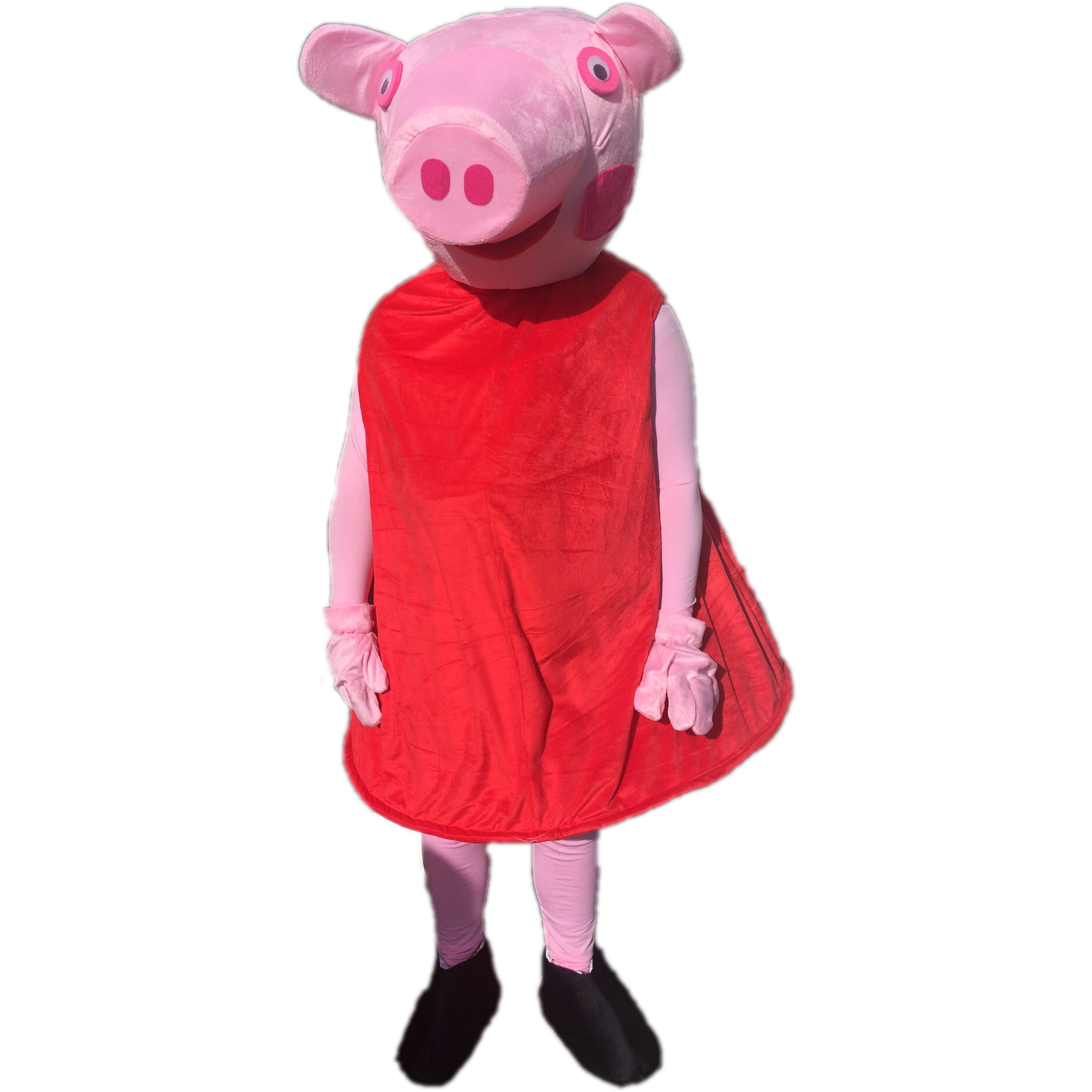 Red Pig Mascot