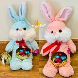 Easter Bunny & Golden Egg