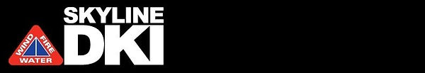 skyline black.jpg