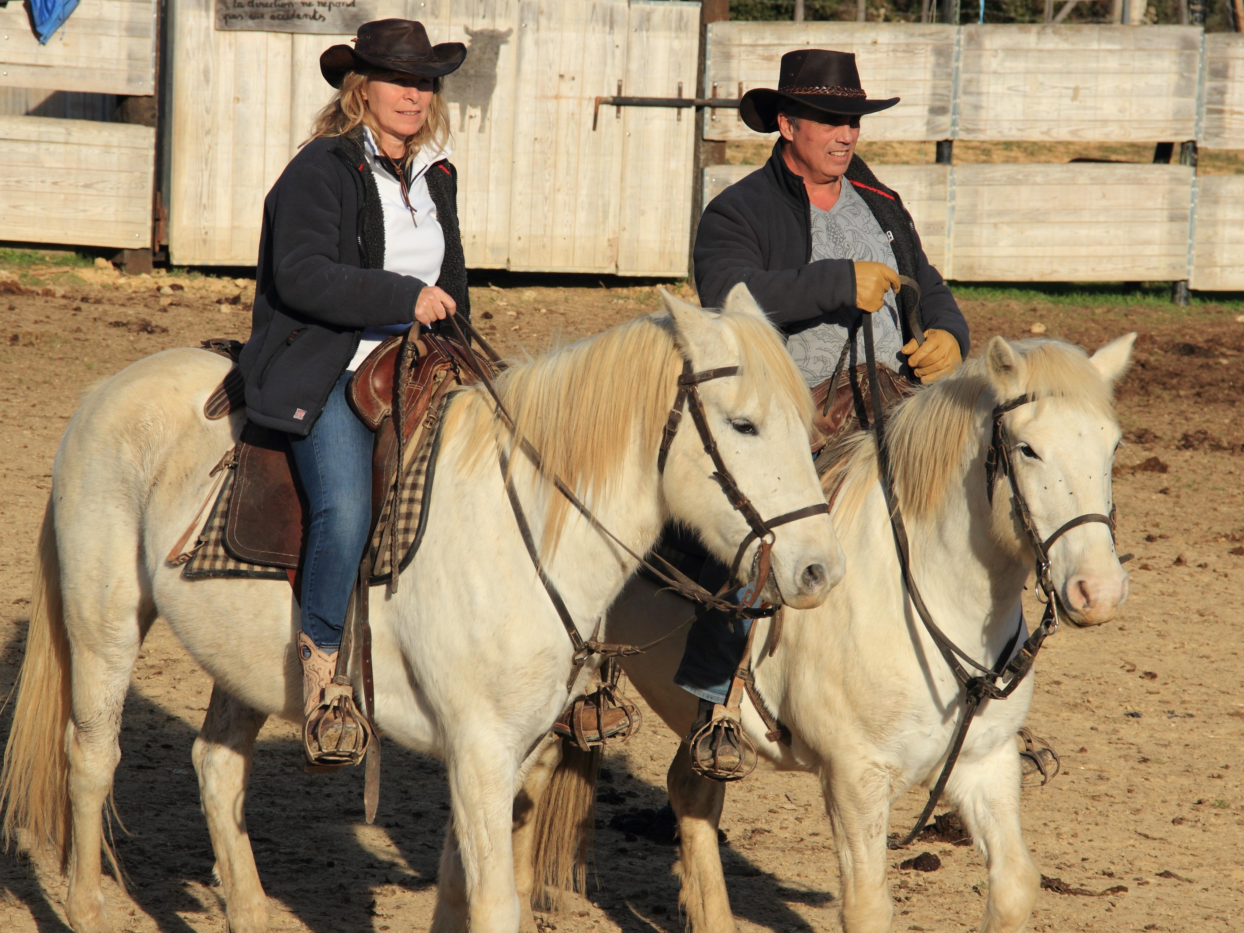 Les chevaux que l'on loue