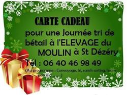 Bon cadeau 2015