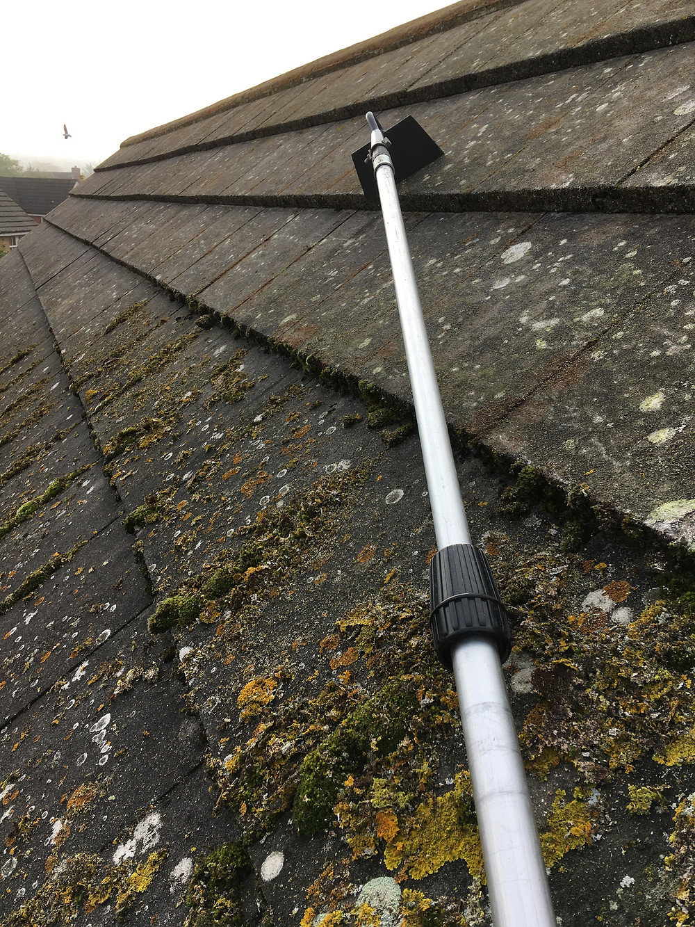 Using a pole and metal scraper to remove moss from a roof in Cambridge
