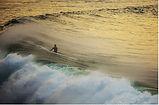 OC-OCEANIC COLOURS.jpg