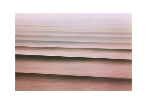 La Vie en Rose - 45x30cm - Matte Photo Paper