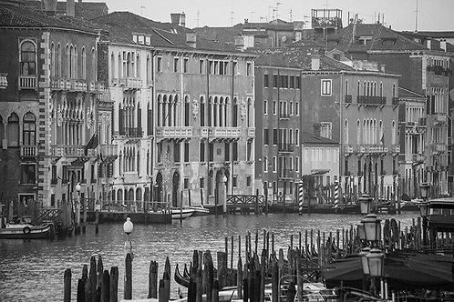 Venezia #15