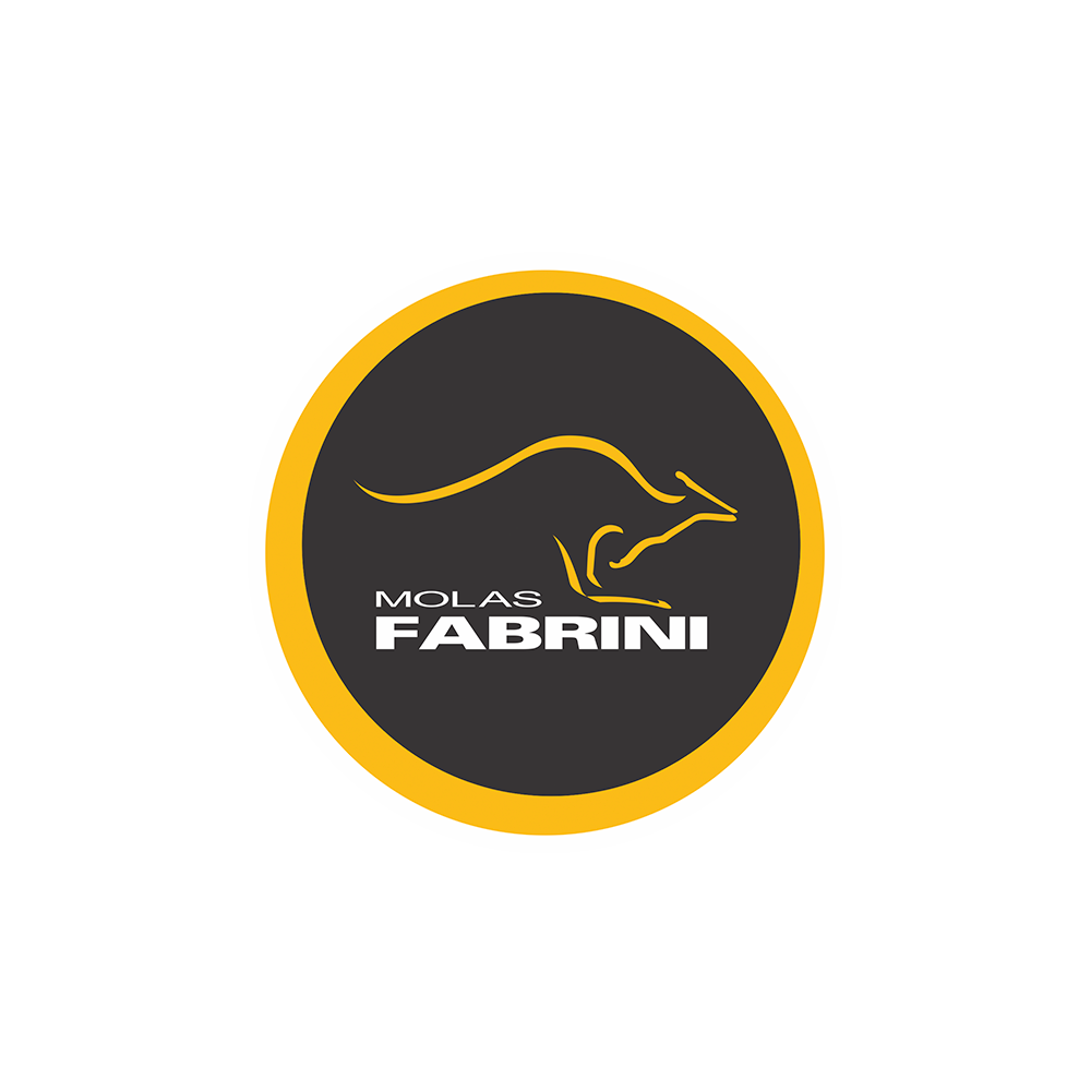 logo_fabrini.png