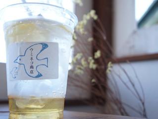 初夏を感じるいわきのカフェ 「うみねこ商店」