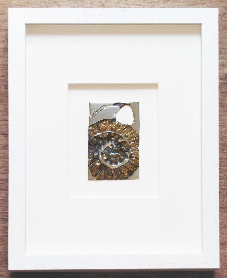 Gold Ammonite