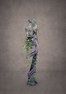 Passion Flower - Missing Series