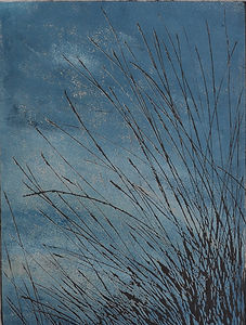 Dartmoor Grasses