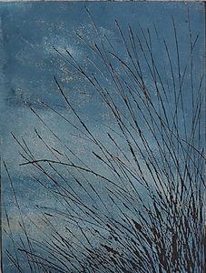 Dartmoor Grasses