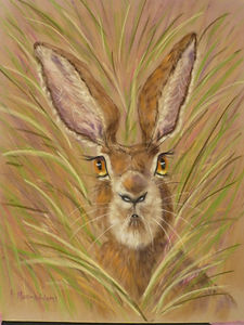 Hare Today!