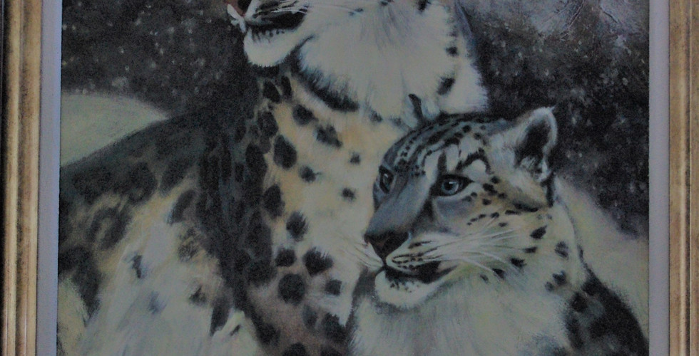 The Last of the Magnificent Snow Leopards