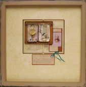 Miss Clara Knight's Curious Collections. Seashore Specimens (viii)