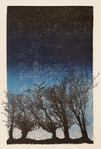 Five Trees at Night