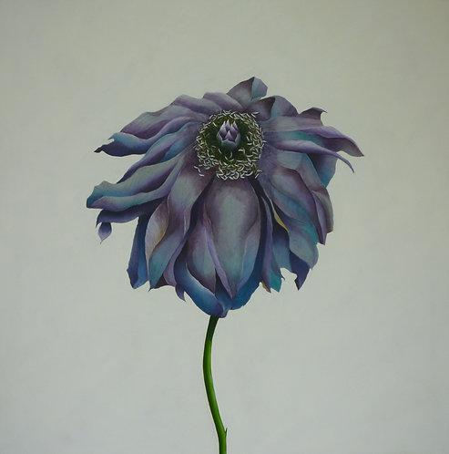 Fiore No 1