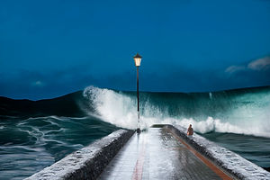 Palmeras Coast I