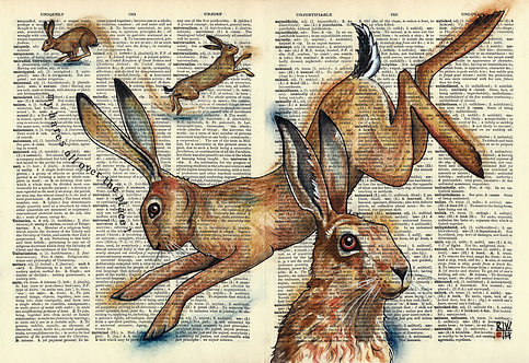 Unkempt: My Hares All Over the Place