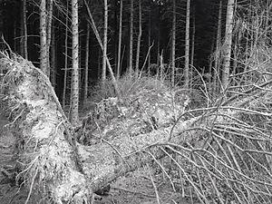 Vanished Places Hidden Narratives