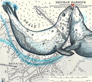 Brixham Seals: S.W.A.L.K.