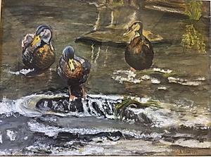 Winchester Ducks
