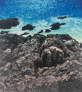 Lichen on Gara Rocks