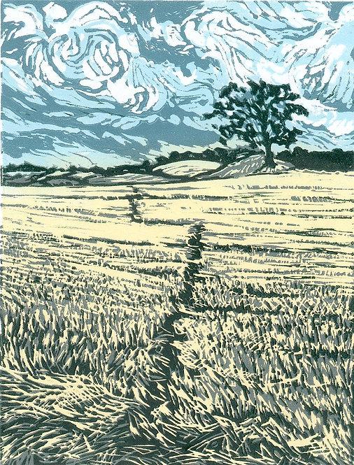 Path Through Cut Corn, Pending Storm