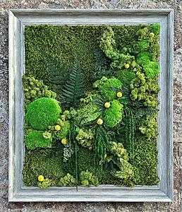 Dartmoor Love