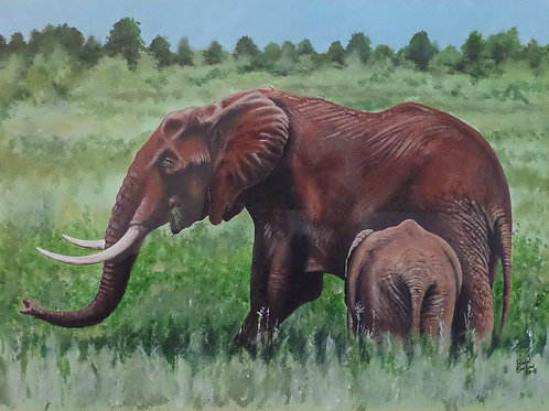 Mother and Calf - African Elephant