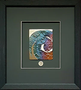 Ammonite Spectrum
