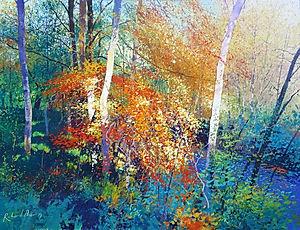 Autumn Chiaroscuro