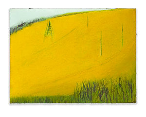 The Rapeseed Field