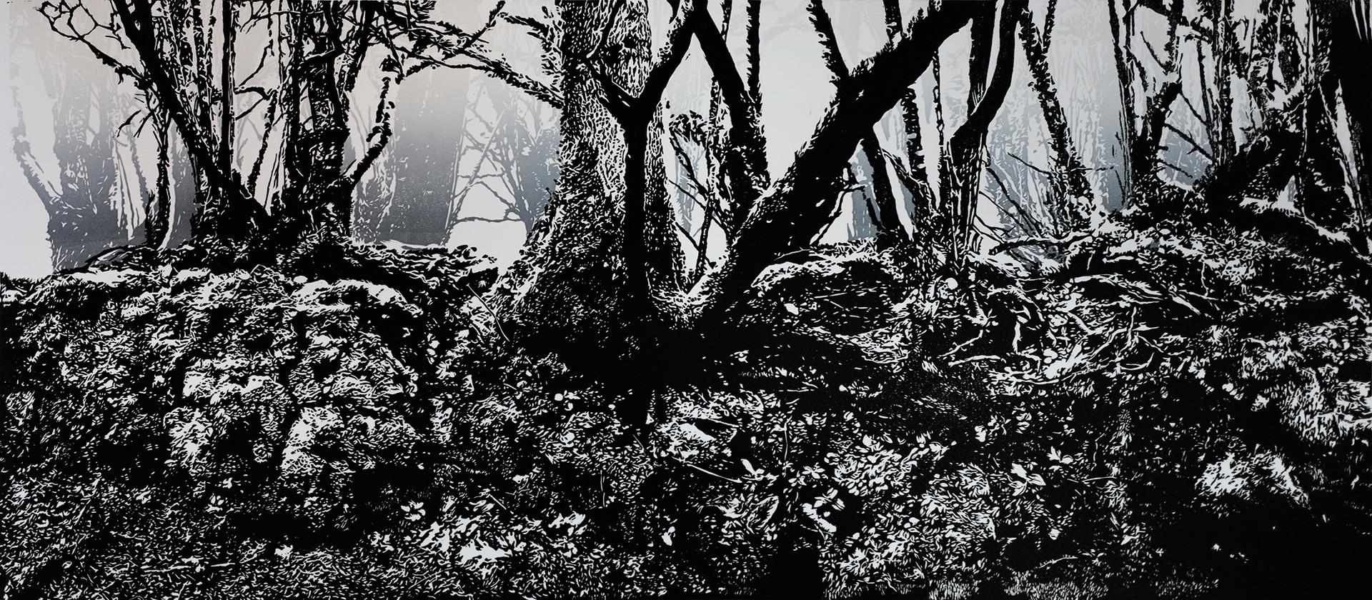 Dartmoor Hedgerow Number 3