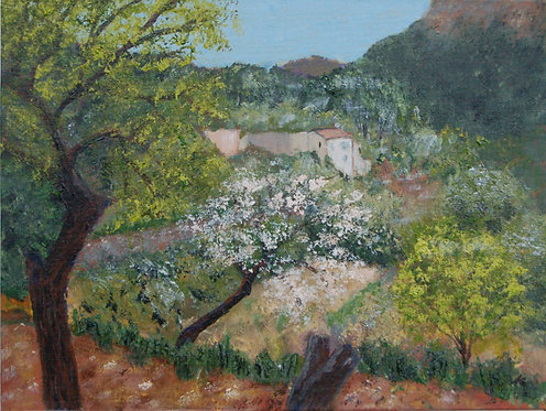 Almond Blossom, Sa Coma